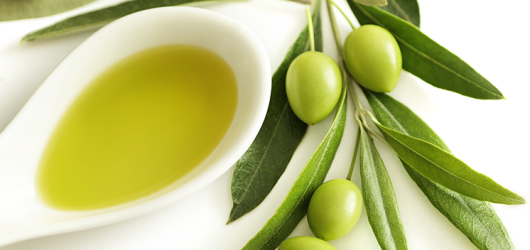 THE OLIVE OIL AND THE GUT MICROBIOTA