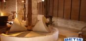 Museos dedicados al aceite de oliva Parte II