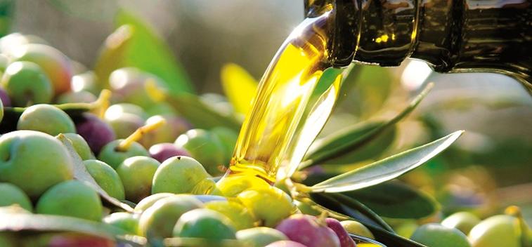 Tipología del aceite de oliva